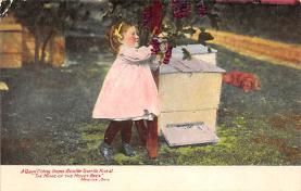 top008087 - Bug Post Card