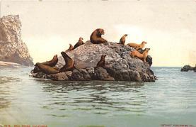 top008839 - Seals