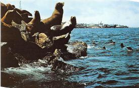 top008861 - Seals