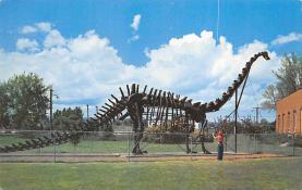 top008881 - Prehistoric Animals