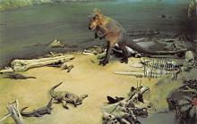 top008899 - Prehistoric Animals