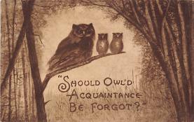 top009115 - Owl