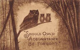 top009119 - Owl