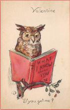 top009147 - Owl