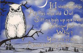 top009163 - Owl