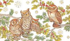 top009197 - Owl