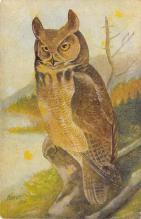 top009247 - Owl