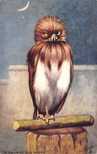 top009261 - Owl