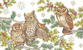 top009265 - Owl