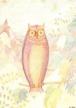 top009273 - Owl