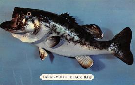 top009305 - Fish/Sea Mammals