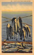 top009355 - Fish/Sea Mammals
