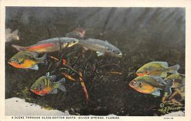top009357 - Fish/Sea Mammals