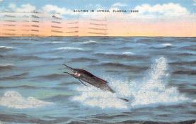 top009423 - Fish/Sea Mammals