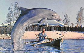 top009435 - Fish/Sea Mammals