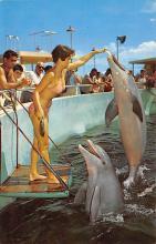 top009437 - Fish/Sea Mammals