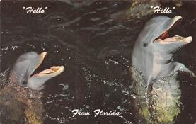 top009439 - Fish/Sea Mammals