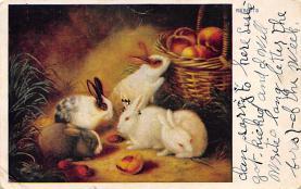 top009709 - Rabbits