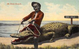 top009787 - Reptiles/Alligator