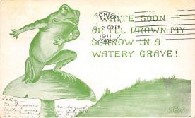 top009847 - Frogs
