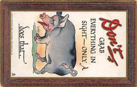 top009879 - Pigs