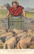 top009889 - Pigs