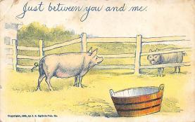 top009935 - Pigs
