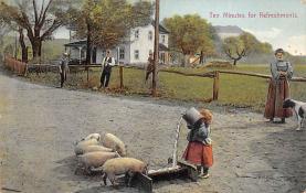 top009951 - Pigs