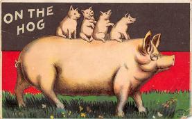 top009953 - Pigs