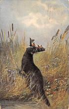 top010263 - Misc Animals