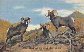 top010347 - Misc Animals