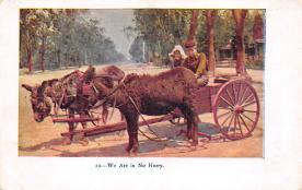 top010483 - Horse Drawn