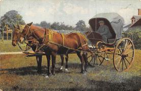 top010491 - Horse Drawn