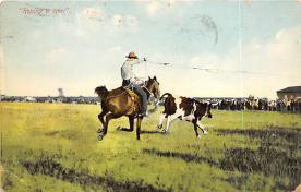 top010843 - Cowboys