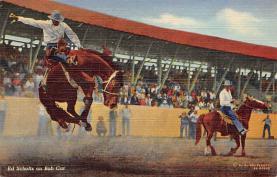 top010905 - Cowboys