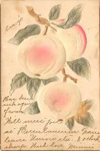 top013999 - Fruit Assorted