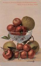 top014009 - Fruit Assorted