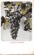 top014013 - Fruit Assorted