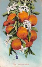 top014037 - Fruit Assorted
