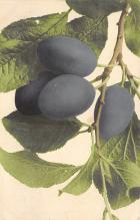 top014041 - Fruit Assorted