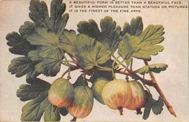 top014097 - Fruit Assorted