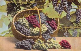 top014125 - Fruit Assorted