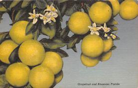 top014145 - Fruit Assorted
