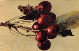 top014199 - Fruit Assorted