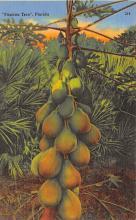top014249 - Fruit Assorted