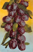 top014251 - Fruit Assorted