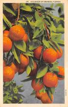 top014255 - Fruit Assorted