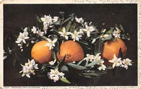 top014273 - Fruit Assorted