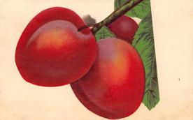 top014307 - Fruit Assorted