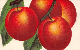 top014311 - Fruit Assorted